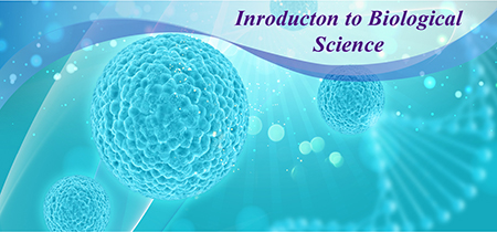 Course Image Introduction to Biological Sciences - Summer Semester - 2018/2019