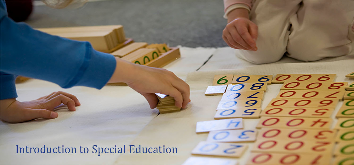 Course Image Introduction to Special Education