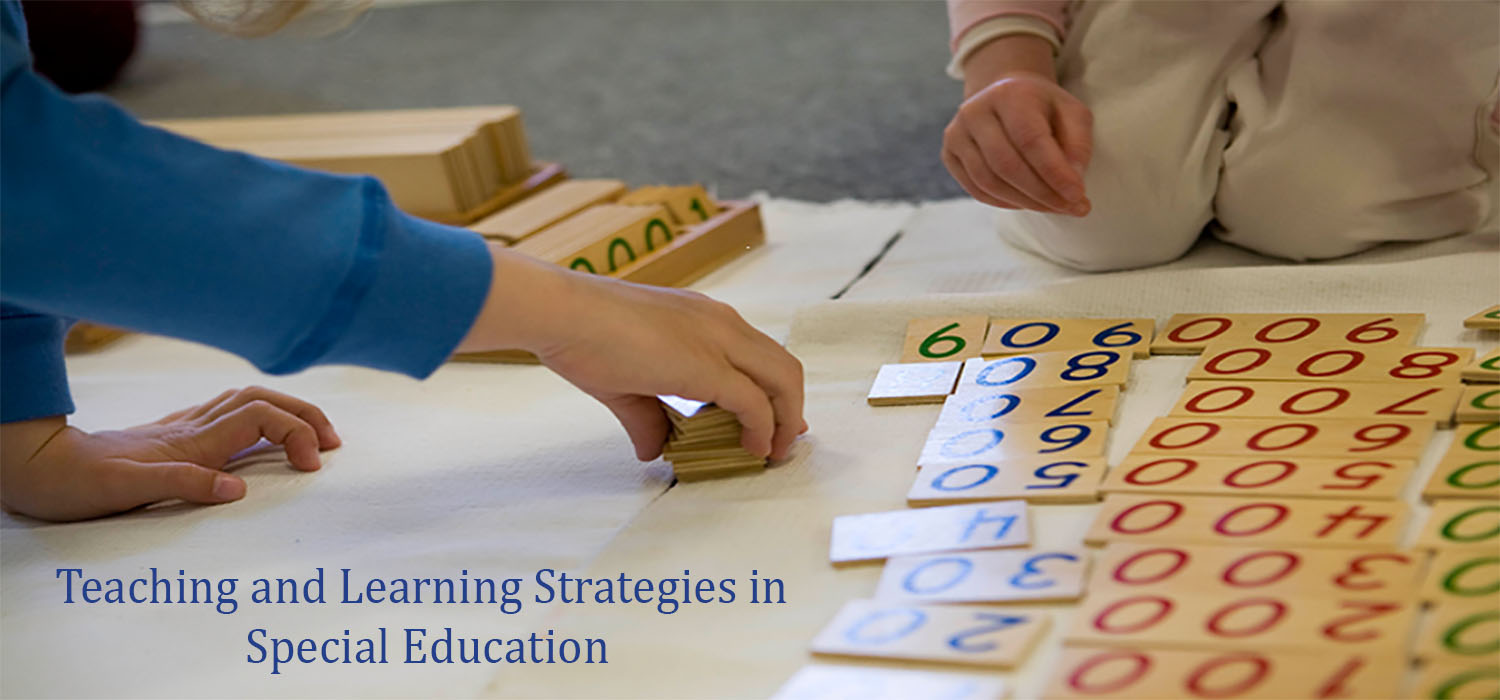 Course Image Teaching and Learning Strategies in Special Education