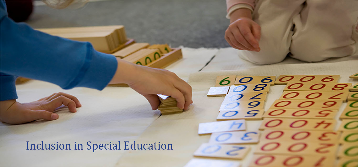 Course Image Inclusion in Special Education
